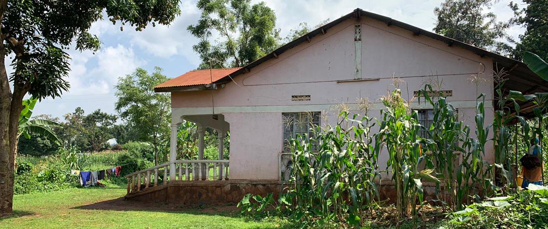 Ein Haus für Joy